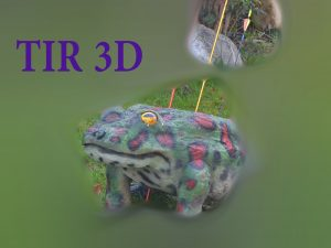 grenouille3d